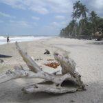 Santa Marta and the Beaches